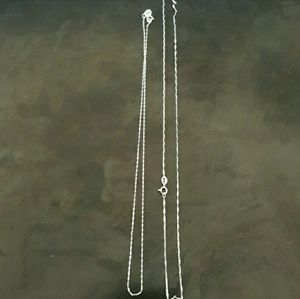 Jewelry - BOTH INCLUDED! 2 styles 925 petite chain necklaces
